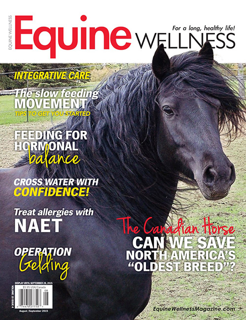 EQUINE WELLNESS MAGAZINE DIGITAL EDITION